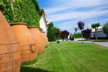 Bodegas y Viñedos Casa del Valle - Patio interior