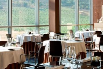 Bodega Cepa 21 - Restaurante Cepa21