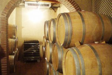 Celler Joan Simó - Zona de barricas.