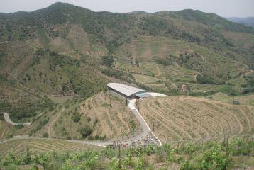 Ferrer Bobet - La bodega vista desde los viñedos más altos de Ferrer Bobet.