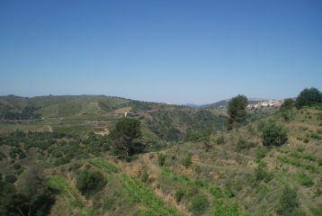 Llicorella Vins - Espectaculares vistas desde los viñedos de la finca Mas Saura.