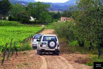 Bodegas Parés Baltà - Visita Terroir Tour