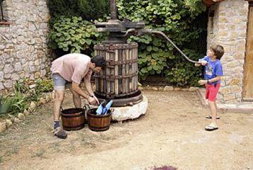 Centro de Interpretación del Vino y la Tonelería Artesana - Curso de viticultura. Prensando