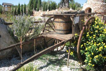 Centro de Interpretación del Vino y la Tonelería Artesana - Museo exterior. Carro