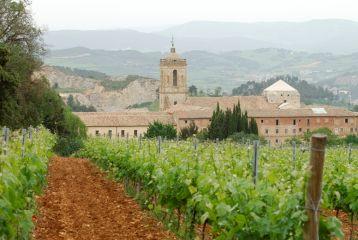 Viñedos de Pago de Larrainzar, situados en un entorno idílico