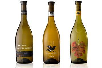 Marqués de Vizhoja - Nuestros vinos