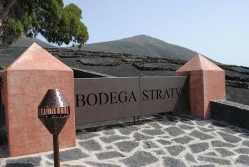Bodega Stratvs - Entrada