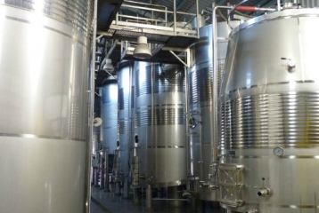 Bodegas y Viñedos Vegalfaro - Sala de fermentación