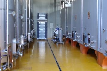 Chozas Carrascal - Sala de vinificación con nuestros depósitos de hormigón.