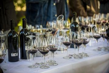 Dominio de la Vega - Cata de vinos