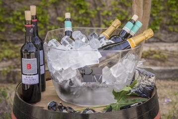 Dominio de la Vega - Cata de nuestros vinos y cavas