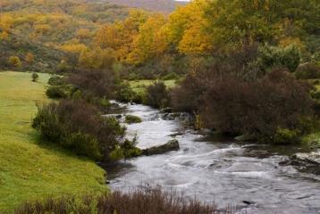 Finca Río Negro - Parque Natural Hayedo de La Tejera Negra