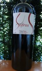 Imagen de Sofros 2009