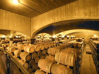 Sala de barricas de Viña Ijalba
