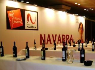 Cata de vinos de Navarra