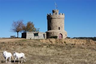 Hay que descubrir los encantos que encierra Navas del Rey (Madrid)