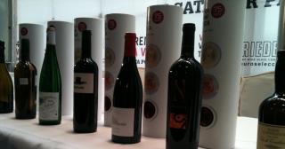 Los vinos de la semifinal