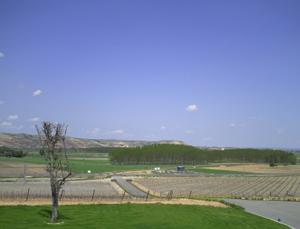 Vistas desde la terraza de Cepa 21