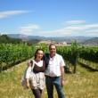 El Encanto de un Viñedo de Navarra