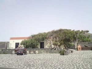 Bodegas Stratvs, vista desde la carretera
