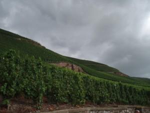 Los escarpados viñedos del Mosela