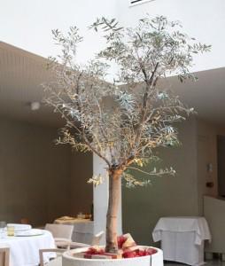 El olivo que preside el salón de El Chaflán
