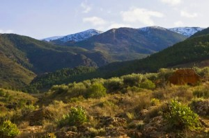 Alpujarras almerienses