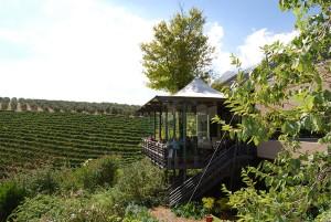 La Ruta del Vino en Cape Winelands