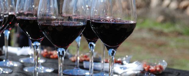Walk y Wine