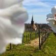 Ruta alemana del vino: Descubre el Palatinado