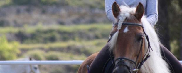 caballo_620x250