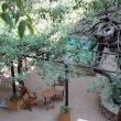 Hotel Hostalsport jardín